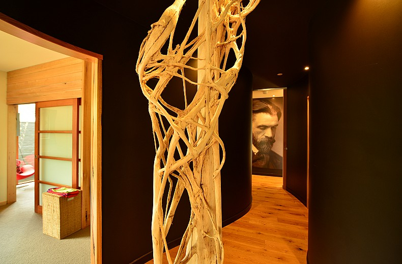 The Winding hallway with a strangler fig in the centre, artistic license for a skeletal form, is opposite the entrance to the main treatment rooms.
